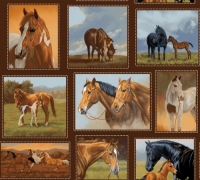 Studio E Fabrics Hold Your Horses Small Blocks by Kathleen Hill Cotton Fabric by half meter or meter