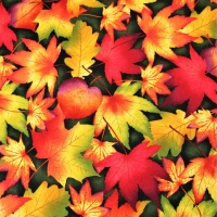 Henry Glass Autumn Time Leaves Craft Quilting Cotton Fabric FQ, half-meter or meter